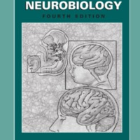 http://biblioteca.uidr.mx/files/intermedio/2005_Book_DevelopmentalNeurobiology.pdf